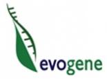 Evogene Ltd. logo.jpg